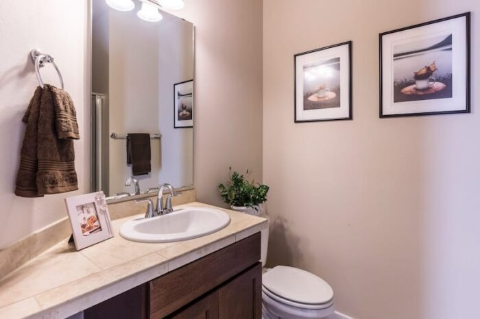 Bathroom-without-windows-Smell-solutions